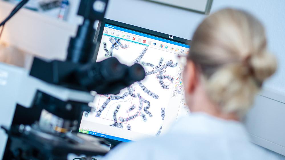 Labor für Molekulargenetik, 19.11.2014